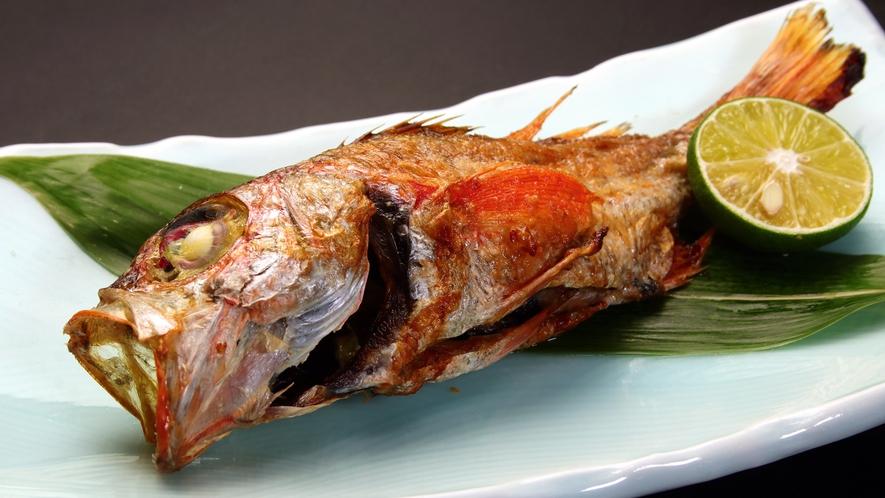 旬の地魚-のどくろ