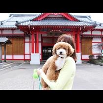 ◆【弥彦駅】
