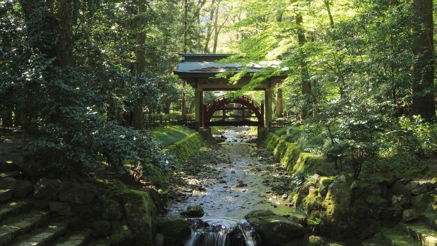 ◆【周辺観光-弥彦神社-】御手洗川と玉の橋。