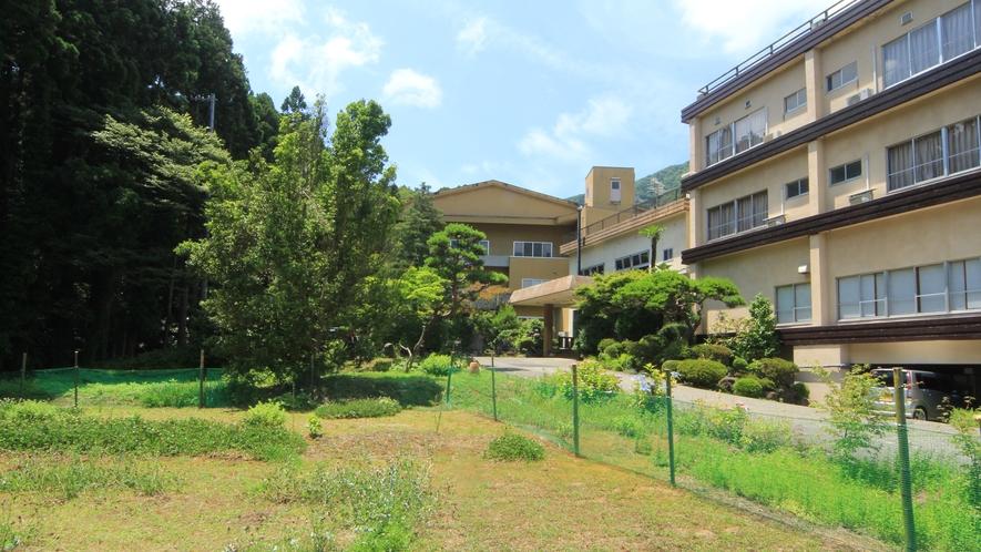 ◆【ドッグラン】上州苑の庭にはミニドッグランがございます。