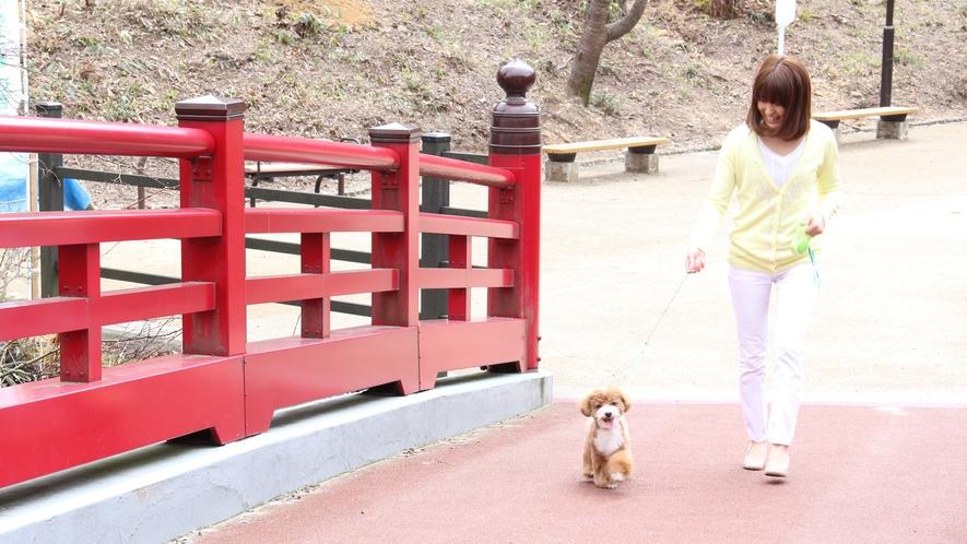◆【弥彦公園】滝や渓流、トンネルなどの景観が美しいとっても広い公園!お散歩大好きなわんこも、飼い主さ