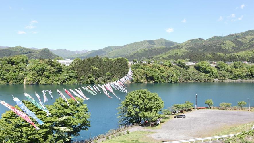■赤谷湖新緑そよ風鯉のぼり■