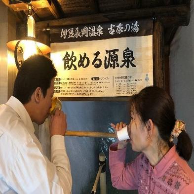 【夏旅セール】本物の源泉に浸かって和食会席料理(10品)又は中国料理(9品)を堪能☆