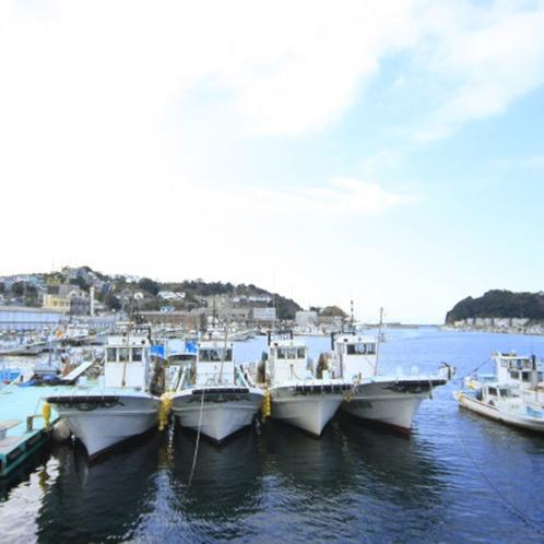 【釣り船】小物から大物まで、お客様の満足の為ならしっかりと釣らせますよ!※有料
