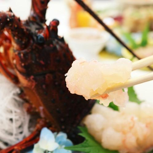 「伊勢海老」活きが良いからできるお造り!プリップリ食感は新鮮ならでは!