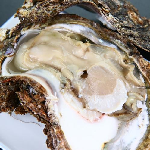 貝尽くしコース◆牡蠣◆普段みることの出来ない大きな殻に囲まれた牡蠣が出ることも