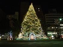 冬の広島のイベント「ひろしまドリミネーション」のツリー