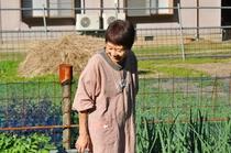 農作物の育ちの良さに思わず笑みを見せる、女将