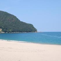 さづ海岸の一例