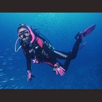 ダイビング体験イメージ