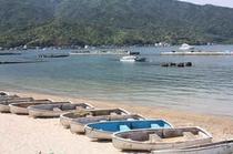 のどかな海辺の休日をお楽しみください☆ボート釣り体験がいつでも出来ます!
