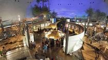 【恐竜博物館】国際的な視野に立った恐竜化石研究の拠点です。大人も子供も楽しめます、化石発掘体験も!