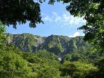 深緑の大山北壁