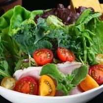 朝食地元産野菜サラダ