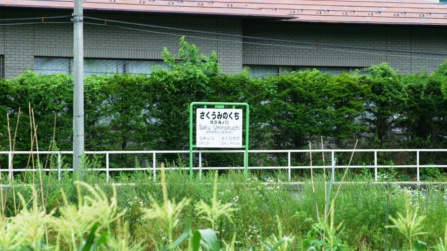 周辺の風景5
