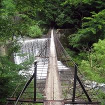*【周辺・景観】安倍の大滝に行くまでにある、大自然に包まれた釣り橋。
