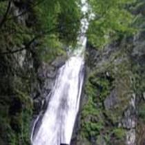 *【周辺・景観】全国滝百選に選ばれた静岡市一大きな「安倍の大滝」