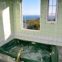 2F禁煙室カモミール バスルームからの景色