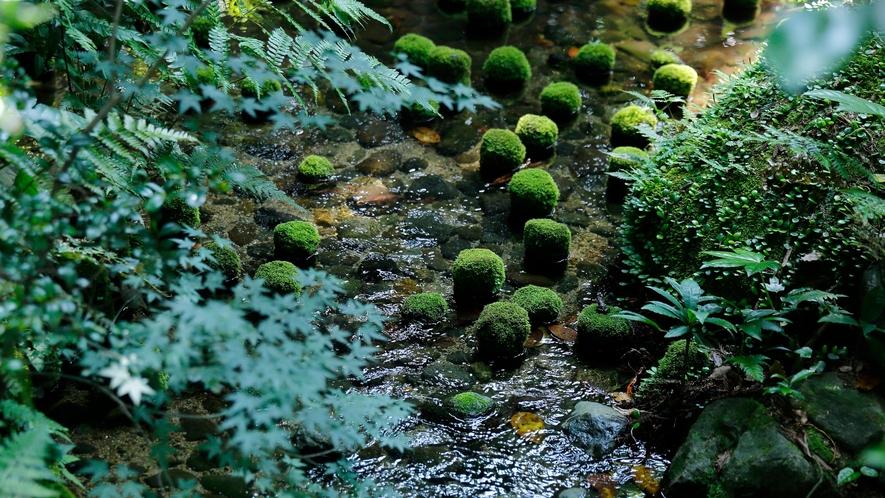 【庭園側和室 桧内風呂付】イメージ04