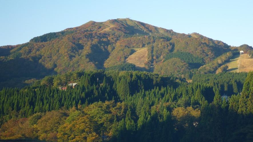 秋の鉢伏山