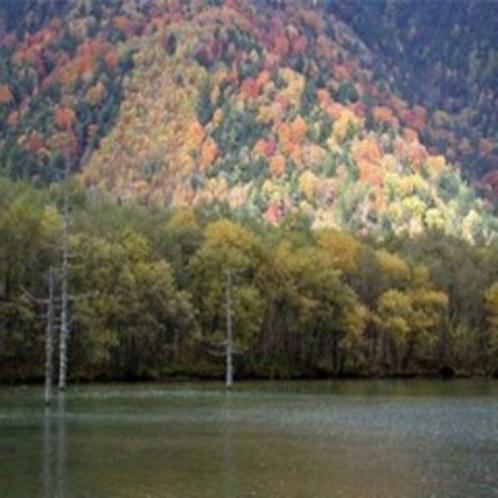 上高地の紅葉
