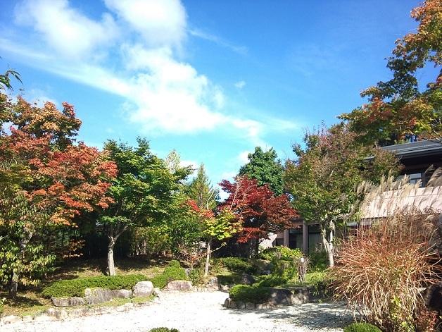 庭 ぼちぼち紅葉 2010