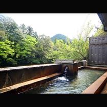 自然の風と景色、せせらぎの音を堪能できる露天風呂