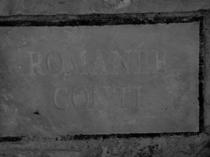 ロマネ・コンティの畑