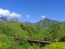 新緑の東沢大橋