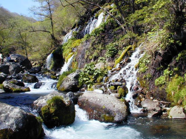 吐竜の滝の流れ