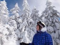 八ヶ岳ブルーに雪の白さがまぶしいスノーシューハイキング