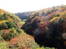 東沢渓谷東沢渓谷(東沢大橋)の紅葉   10月上旬~11月上