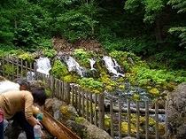 京極/ふきだし公園