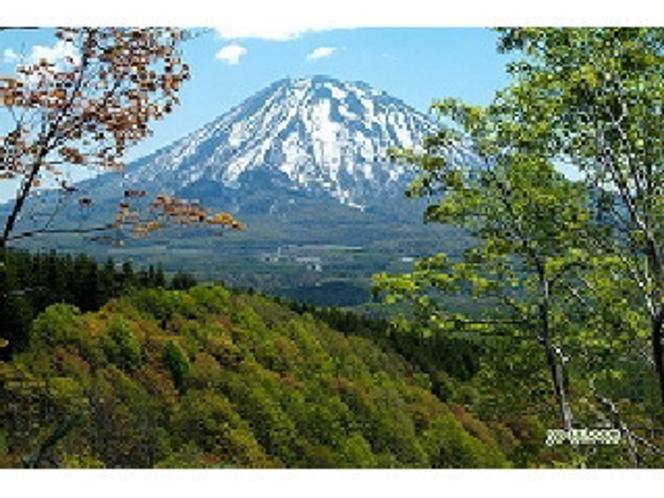 新緑と羊蹄山