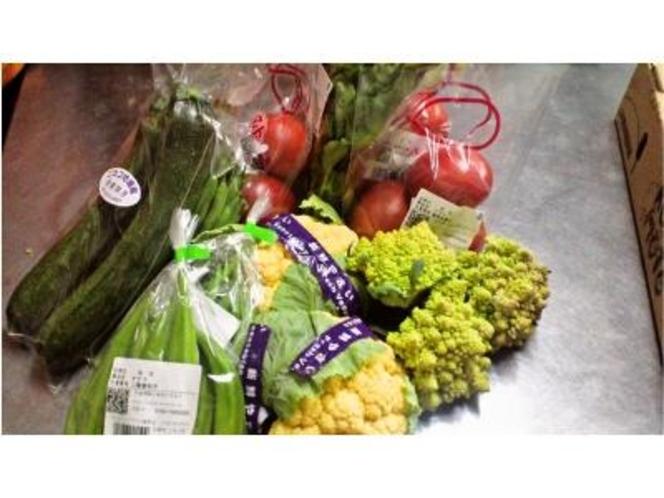地場産野菜を仕入れています