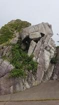 しまや前の漁港にある落ちない岩