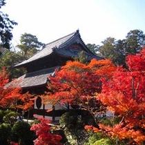 秋になると紅葉がきれいな宝福寺