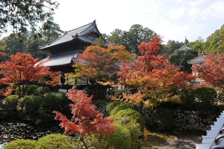 画聖雪舟が修行した寺宝福寺