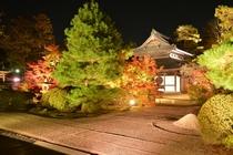 【秋】ライトアップされた宝福寺