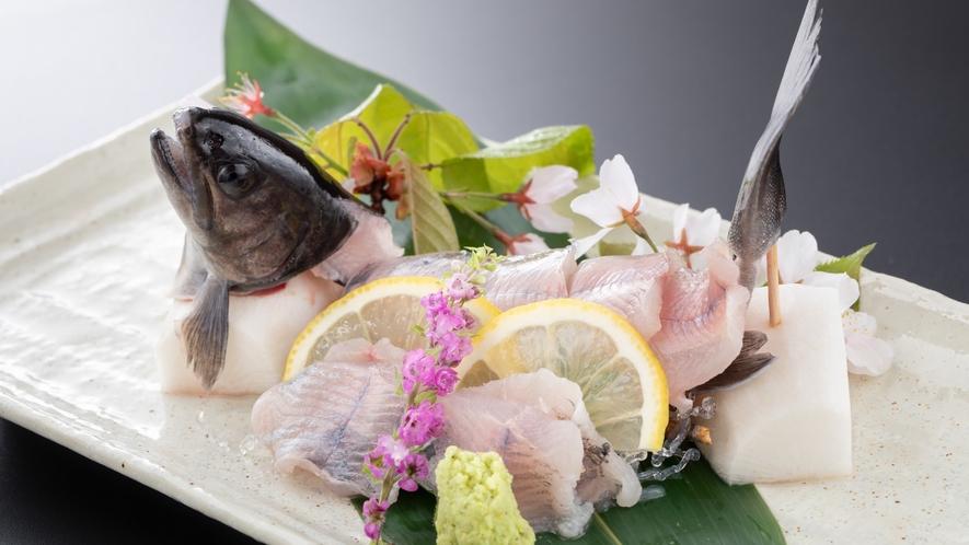 【一品料理】岩魚のお造り