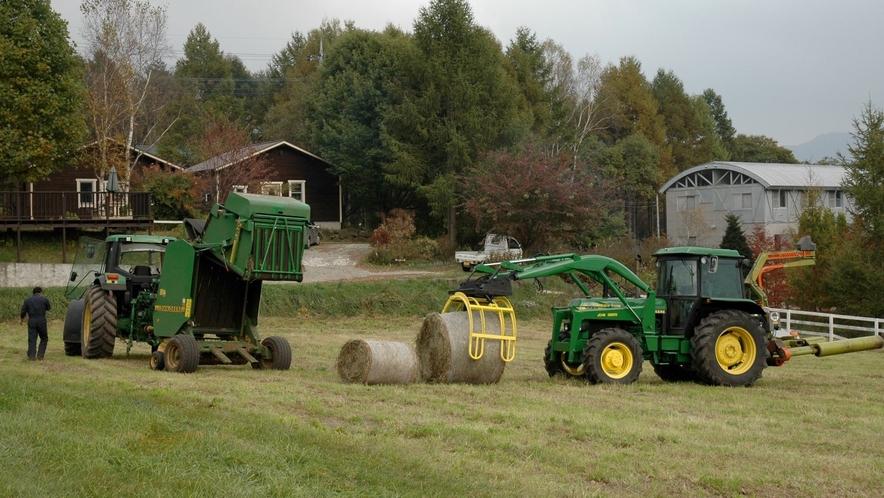 牧草の刈り取り風景。牧草地帯ならではの、こんな光景も客室の窓から眺めることができます。