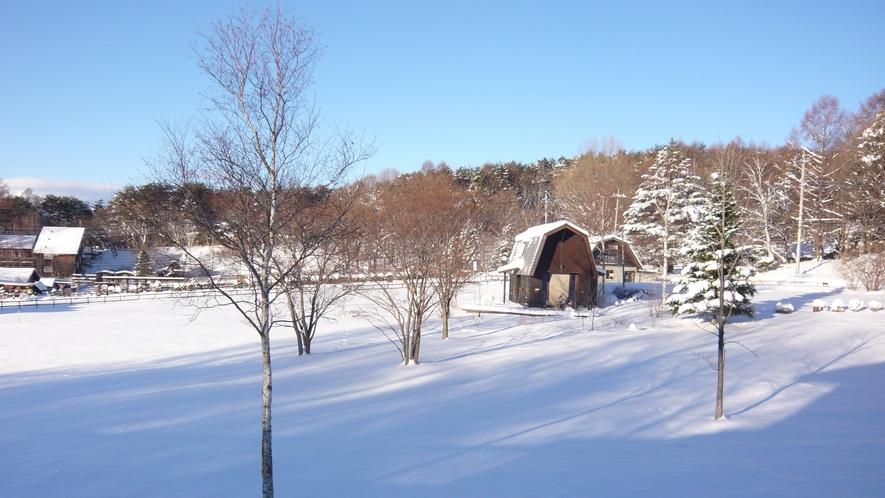 雪の季節は牧草地の眺めもガラッと変わります。