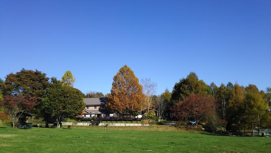 紅葉が始まりかけた秋の日の全景。