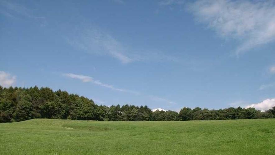 客室の窓の外に続く牧草地。思い切り両手を広げたくなる緑の原です。