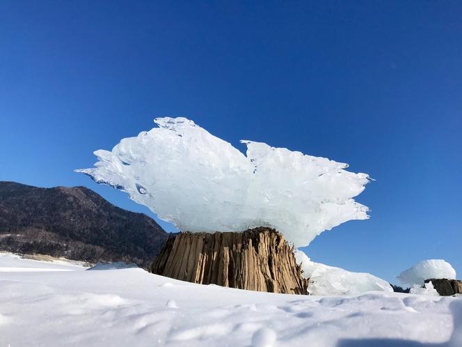 キノコ氷。