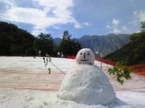 夏の雪まつり4