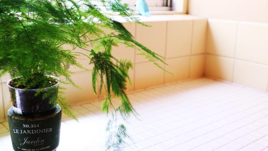 ■【住乃江の雰囲気】随所に館主こだわりのインテリアや植物が。