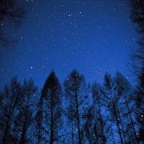 ニセコの星空