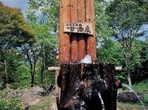 ※ホテル甘露の森から徒歩5分の場所に自然と湧く甘露水