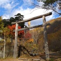 浅間山荘近隣の紅葉の様子です